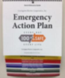 Sample Emergency Action Plan image