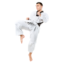 prodisa5 atleta taekwondo.png