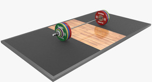 3D-eleiko-barbell-model_D.jpg