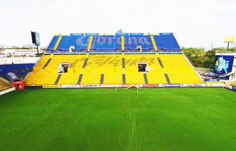 Estadio Dorados de Sinaloa, Estadio Carlos González y González