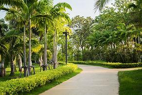 pista-jogging-parque-verde_3236-1360.jpg