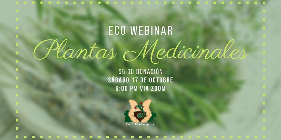 Webinar: Taller de plantas medicinales