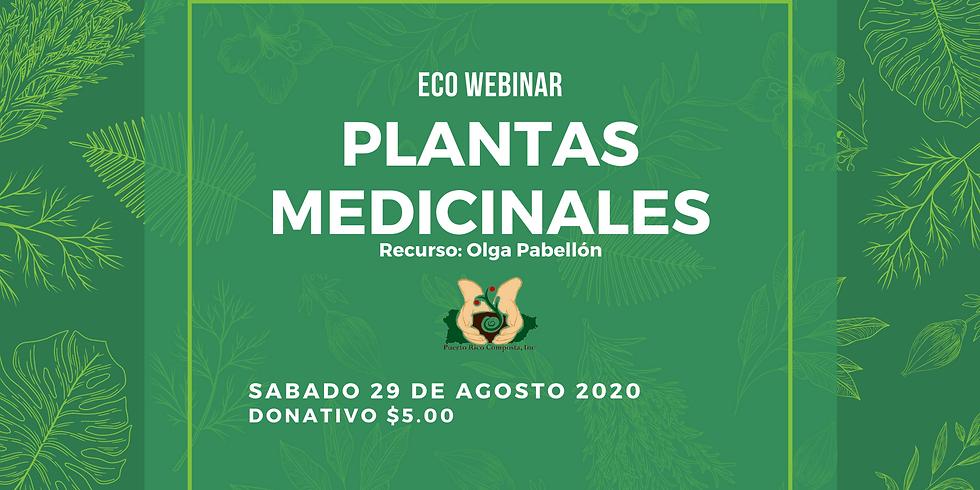 Eco Webinar: Plantas Medicinales