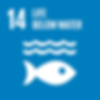 E_SDG goals_icons-individual-rgb-14.png
