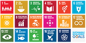 updated sdg grid 2.png