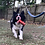 Thumbnail: FIRECRACKER Training Dummy