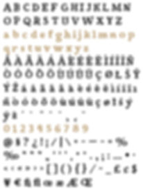 Siggy typeface - Designed by Michael Parson - Typogama type foundry