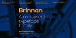 Brinnan-Template_1440px_01.jpg