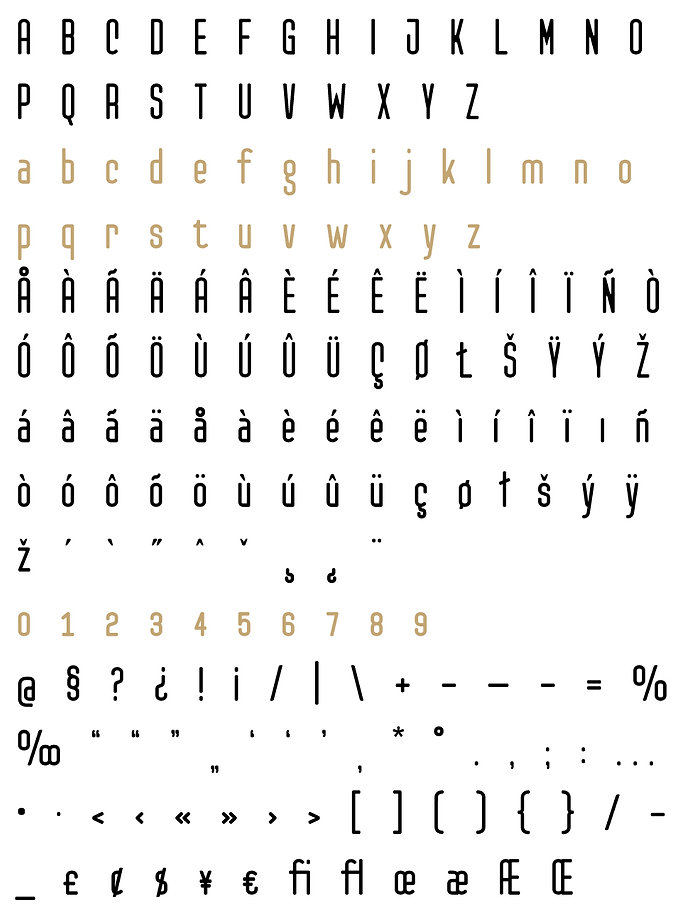 Checkpoint typeface - Designed by Michael Parson - Typogama type foundry