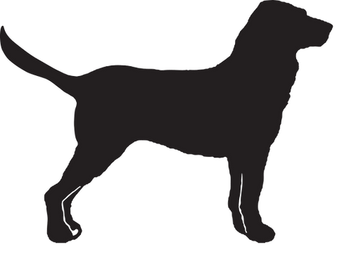 D is for Dog Logo Vector.png