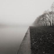 Foggy Morning- versailles