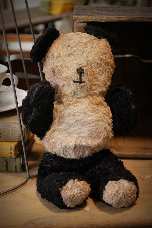 vintage stuffed toy bear child decor party event baby shower photography rental