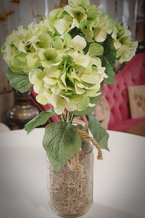 Green Hydrangeas - jar