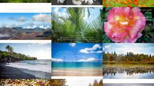 Micafoto Original Calendar 2016 release