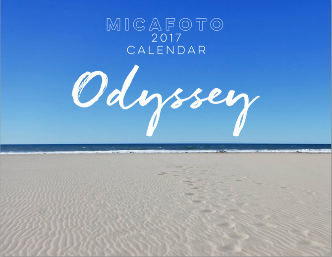 MICAFOTO wall calendar 2017 on sale now