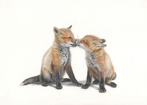 Foxes 300dpi.jpg