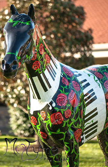 Lexington KY 8 Music