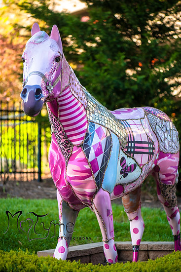 Lexington KY 6 Save the Tatas Horse