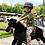 "Thumbnail: ""Αστραπή"" Μεγάλο Μαύρο  Άλογο  Ιππασίας  κωδ.L9906"