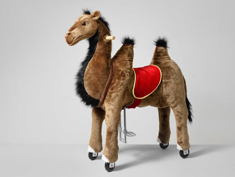 Πανέμορφη  Καμήλα ιππασίας 5-12 ετών  κωδ.HA4010