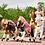 Thumbnail: Άσπρο άλογο ιππασίας 5-12 ετών  Ύψος 104εκ. κωδ.HM4050