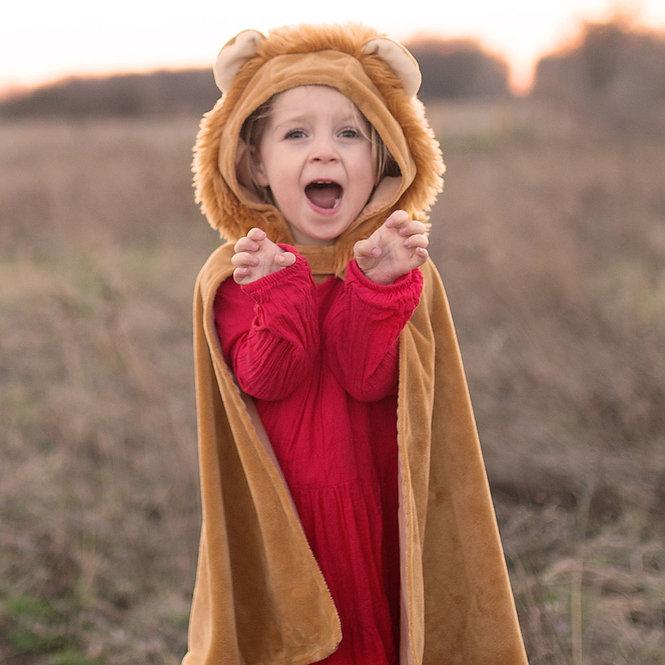 'Λιοντάρι' 2-3 ετών Κωδικός: Τ53032