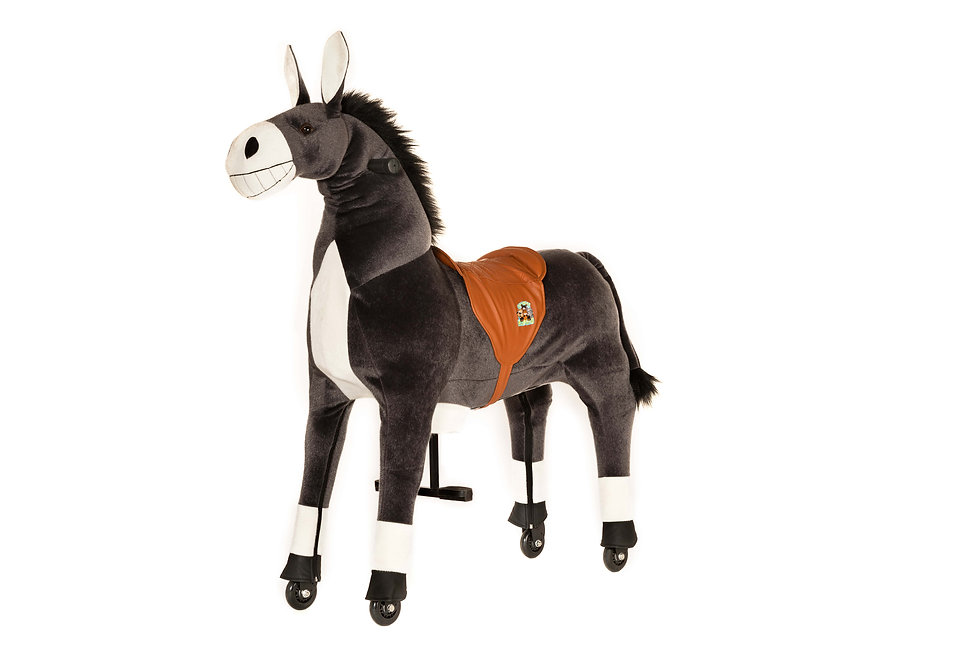 Άλογο Γαϊδουράκι  Ιππασίας  5χρ.+ κωδ.A2410