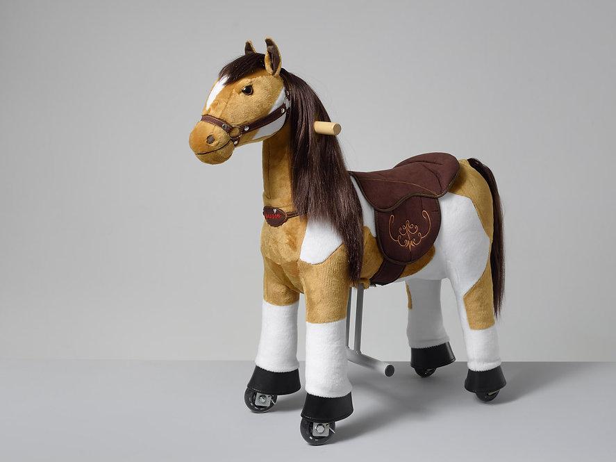 Πανέμορφο μικρό  αμερικάνικο άλογο ιππασίας 3-6 ετών κωδ.HA3071
