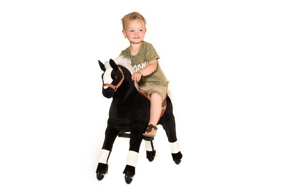 """""""Αστραπή"""" Μικρό Μαύρο  Άλογο  Ιππασίας  κωδ.LΜ9976"""