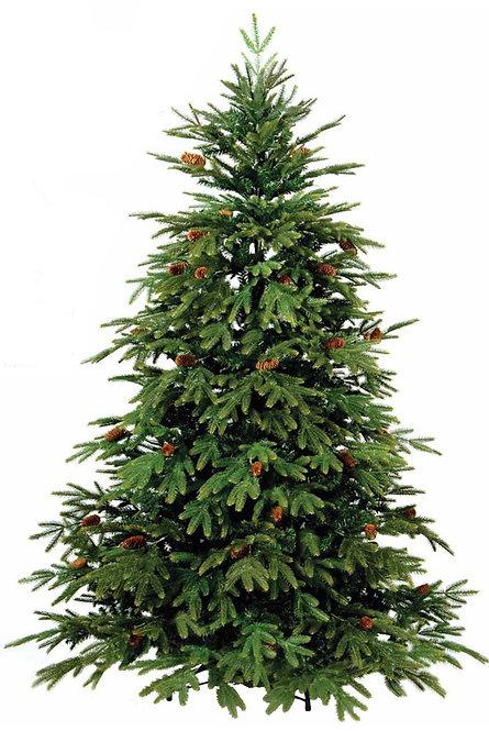 """"""" Δέντρο ΌΛυμπος """"   3,00μ κωδ.LN 0701-B"""