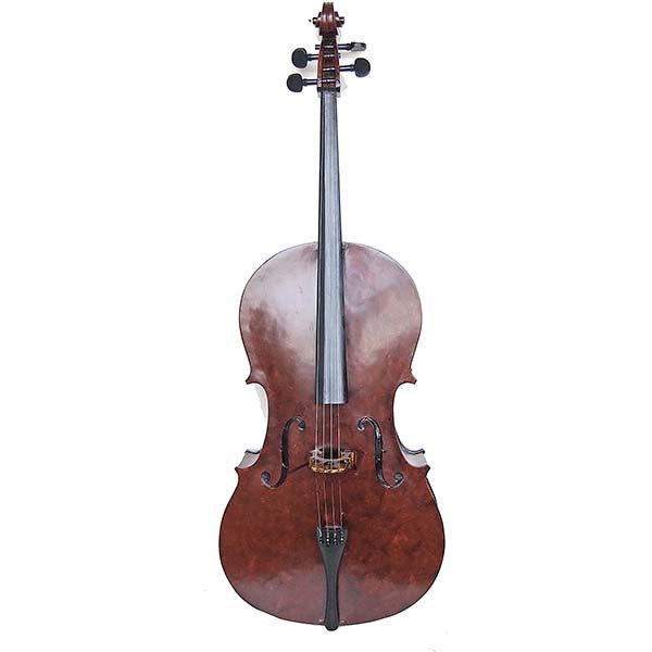 Βιολοντσέλο Ρεσίν κωδ.K53020
