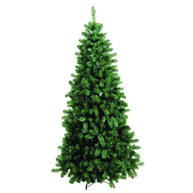 Δέντρο Παρνασσός  ύψος 2,10μ κωδ.Z882