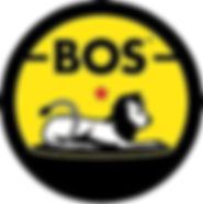 boss ice tea logo.jpg
