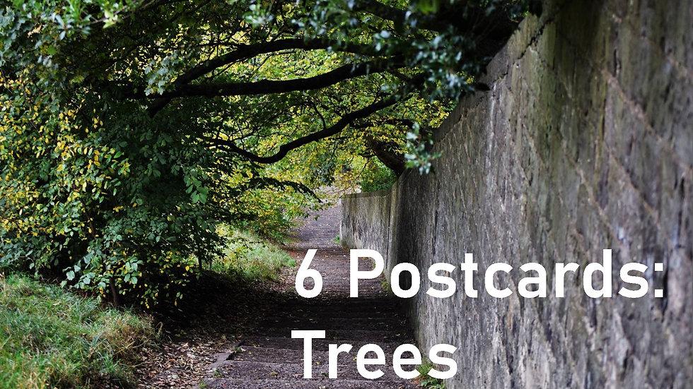 Set of 6 postcards: Trees
