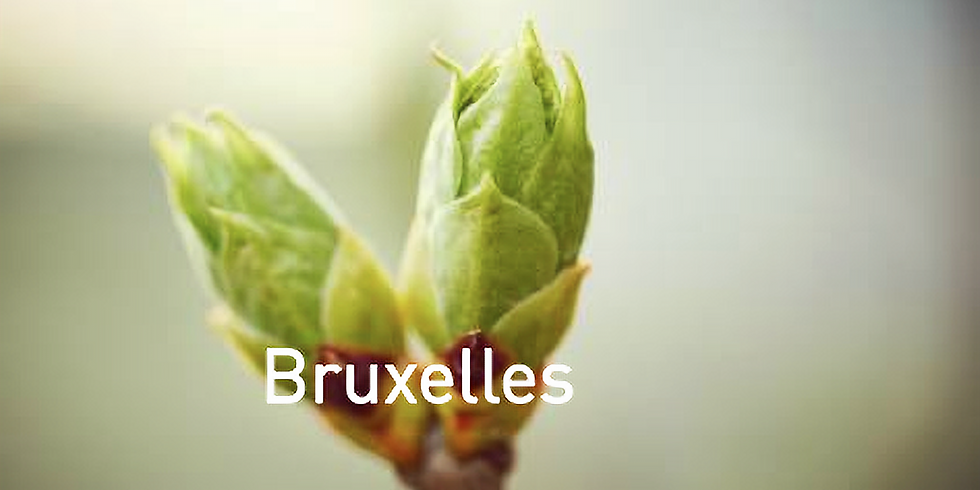 Atelier-conférence - La vitalité, les plantes et les bourgeons