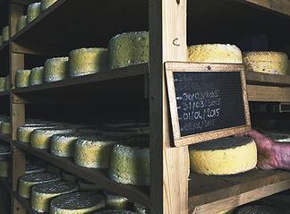 ferme fromagere de suscinio tome de rhuys bourvellec