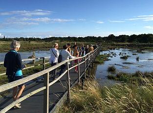 reserve naturelle des marais de sene