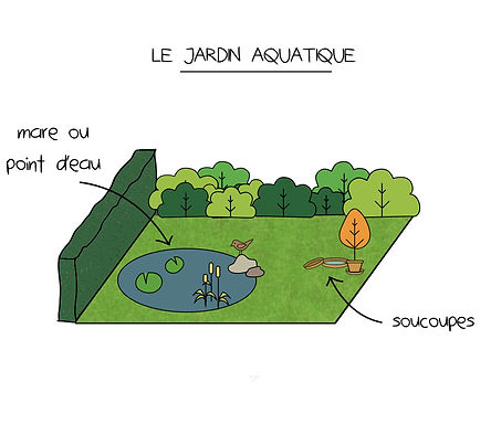 jardin aquatique oiseaux