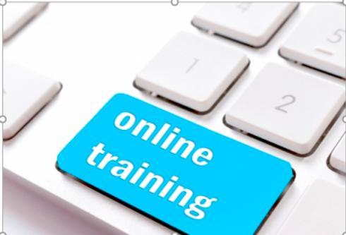Online-Training-Brighton-Holistics-.png