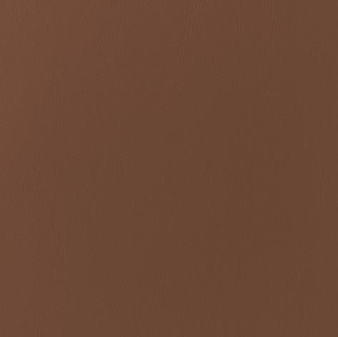 Caramel Leather