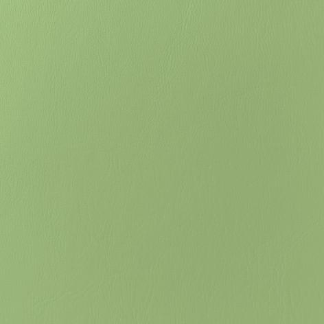Spearmint Leather