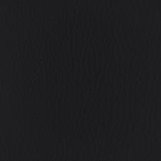 Premium Onyx Leather