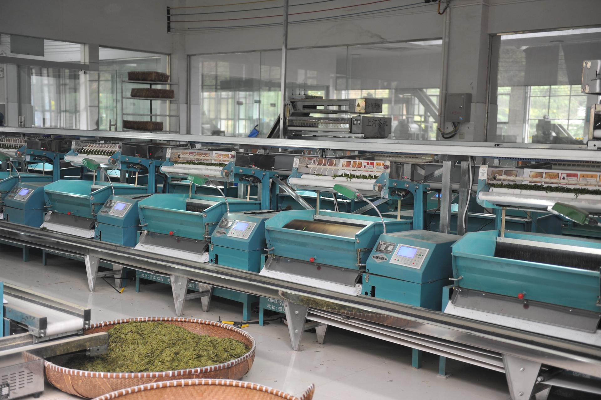 Our Long Jing (Dragon Well) Green Tea Factory