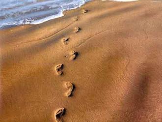 7 Passos para Santificação