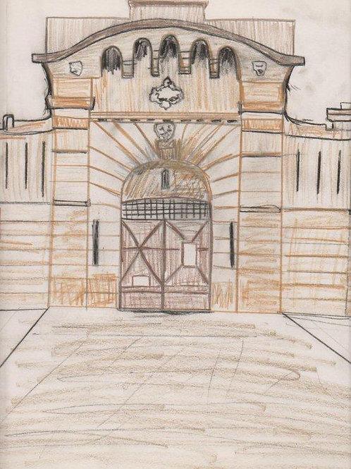 Goulburn Gaol Entrance Book 1847-1867