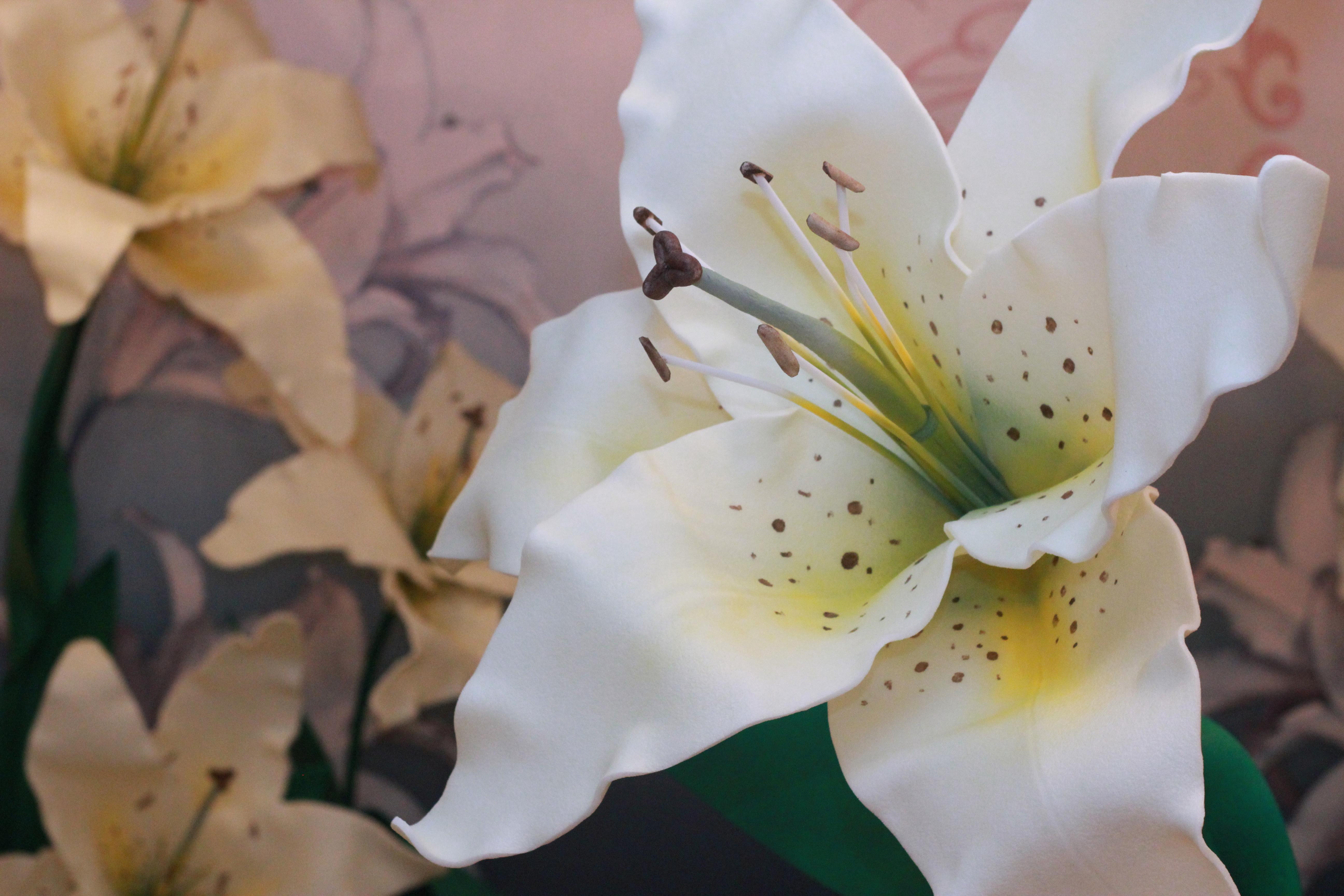Большие лилии для фотозоны