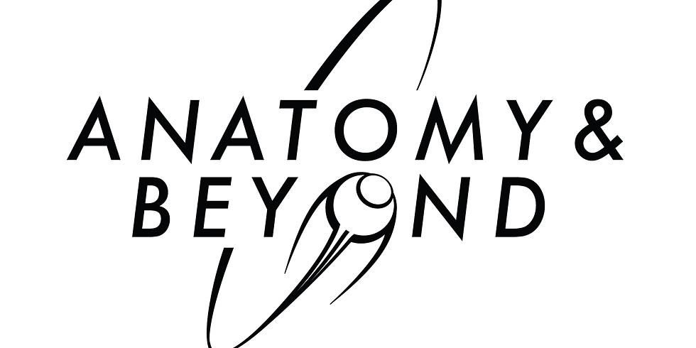 Anatomy & Beyond 28th AEIMS Congress