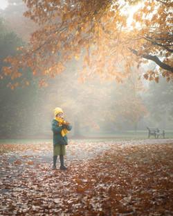 Autumn Photographer Bedfordshire