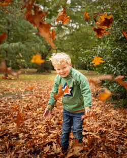 Autumn Leaves Photographer Bedford