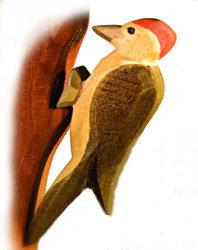 Woodpecker-16810